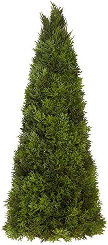 Amazon Com Raz Imports Winter Botanicals 22 Cedar Tree Cute Mini Christmas And Holiday Decor Festive Xmas Topiaries Table Top Decorations Greenery For Office Desks Dining Tables Shelves