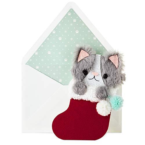 - Hallmark Signature Christmas Card for Kid (Kitten in Stocking)