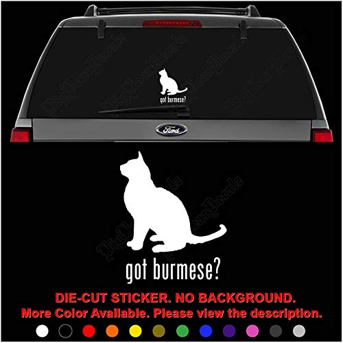Got Burmese Cat Pet Die Cut Vinyl Decal Sticker for Car Truck Motorcycle Vehicle Window Bumper Wall Decor Laptop Helmet Size- [6 inch] / [15 cm] Wide || Color- Gloss White