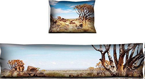 (Luxlady Mouse Wrist Rest and Keyboard Pad Set, 2pc Wrist Support Landscape with quiver trees Aloe dichotoma Namibia IMAGE ID 3759678)