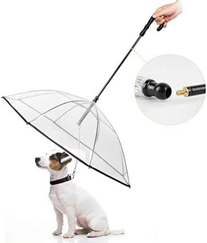 Enjoying Umbrella Leash Small Dogs product image