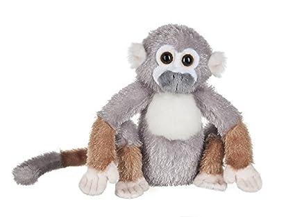 Amazon Com Webkinz Squirrel Monkey Plush Toys Games