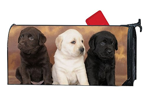 Dimanzo Magnetic Mailbox Cover - Spring Themed Welcome Home Mailbox Wrap with Decorative Labrador Retriever Puppies, Standard Sized,17.25 x 20.75 Inches