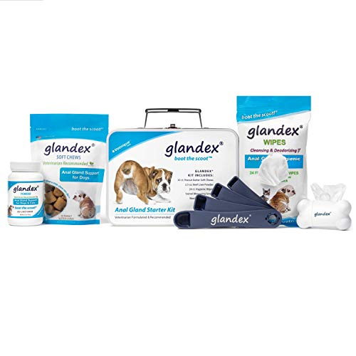 Glandex Anal Gland Support Starter Kit Fiber Supplement for Dogs with Pumpkin, Digestive Enzymes & Probiotics Contains Beef Liver Powder, Peanut Butter Soft Chews, Pet Wipes and Scoop!