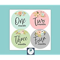 Baby Monthly Milestone Stickers by BabyBumpMoments | Set of 12 Floral Baby Stickers for First Year | Baby Shower Gift