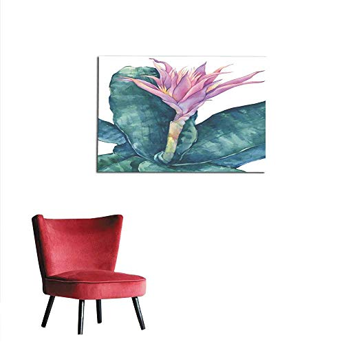 Photographic Wallpaper Blossoming Tropical Pink Flower Aechmea fasciata (Bromeliad aechmea Primera Silver vase urn Plant) with Leaves Hand Drawn Watercolor Painting Illustration isolatemural 24
