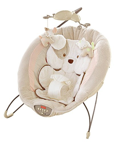 Fisher-Price My Little Snugapuppy Deluxe Bouncer (Price Seat Bouncer Fisher)