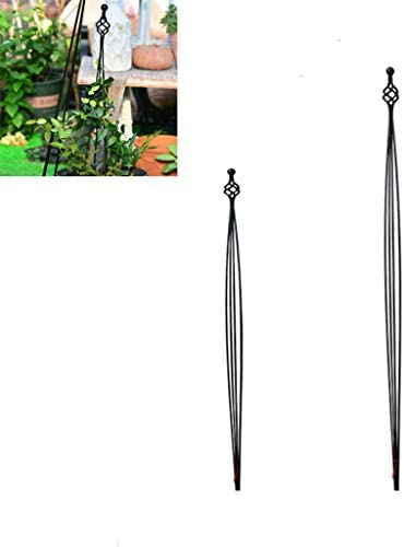 2パック庭の植物支持枠ガーデンオベリスクフラワーステンレス鋼サポートクライミングVegtables花果物はケージ、花植物クライミングフレームを成長させます