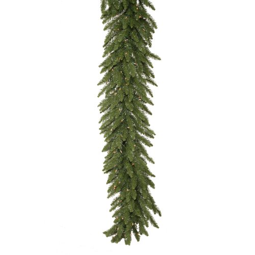 Christmas Tree Camdon Fir (50 ft x 12