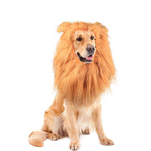 BAODATUI Lion Mane for Dog - Lion Mane Wig Costumes - Dog Halloween Costume Lion Hair for Large or Medium Dogs - Soft Touch Comfortable Fancy Hair with Free Lion Tail -