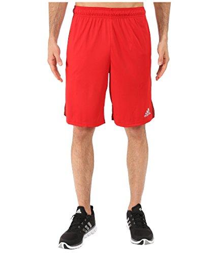 (adidas Men's Climacore Shorts, Scarlet/Black, Large )
