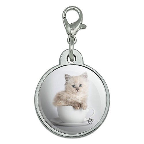(Graphics and More Ragdoll Tiffany Cat Kitten Tea Cup Ride Chrome Plated Metal Pet Dog Cat ID Tag - Small)