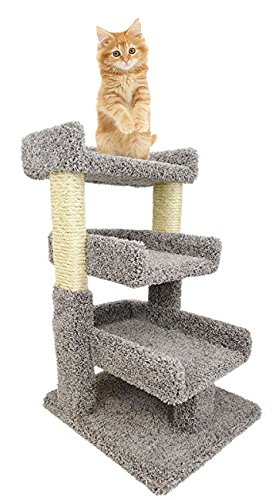 Cat Tree Mini 33 inch Wooden Cat Furniture 3 Beds & Rope, Gray Carpet Review