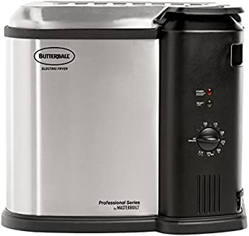 Butterball 1650W 8L Electric Fryer