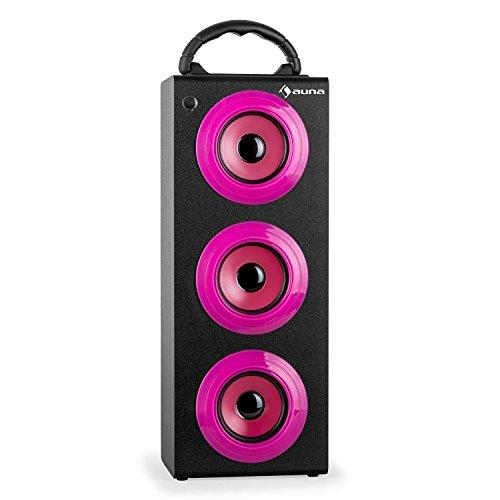 auna Beachboy XXL Tragbarer Party Lautsprecher Außenlautsprecher für Park und Strand (Akku-Betieb, USB-SD-Slot, Bluetooth-Lautsprecherbox, Radio, Fernbedienung, AUX) pink