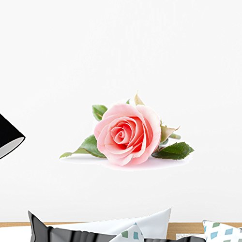 Wallmonkeys Pink Rose Flower White Wall Decal Peel Stick Floral Graphic (18 in W x 12 in H) WM367999