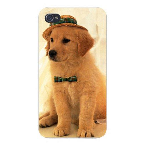 Apple Iphone Custom Case 4 4s White Plastic Snap on - Cute Puppy Dog Golden Retriever w/ Plaid Bow Tie & Fedora Hat]()
