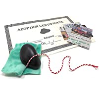 Rock Pet with Deluxe Adoption Kit Novelty Prank Gift