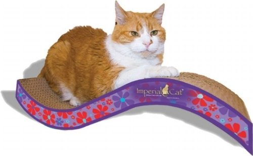 Imperial Cat Purrfect Stretch Scratch and Shape, Medium, Retro Purple Floral by Imperial Cat