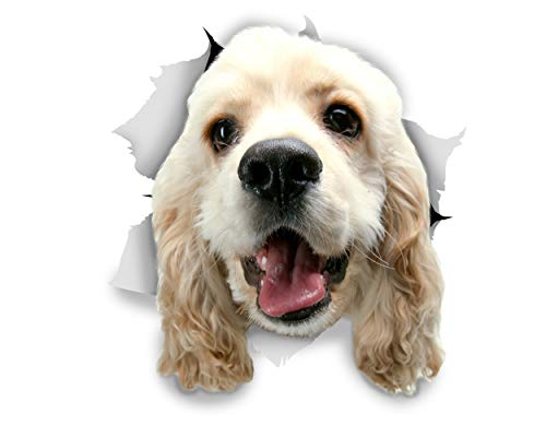 Winston & Bear 3D Dog Stickers - 2 Pack - White Cocker Spaniel for Wall, Fridge, Toilet and More - Retail Packaged Cocker Spaniel Stickers