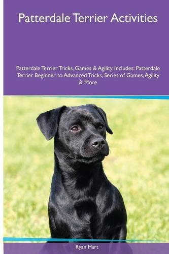 Patterdale Terrier  Activities Patterdale Terrier Tricks, Games & Agility. Includes: Patterdale Terrier Beginner to Advanced Tricks, Series of Games, Agility and More