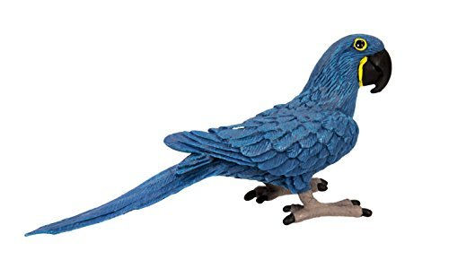 Safari Ltd Wings of the World Hyacinth Macaw (Top 5 Most Endangered Animals In The World)