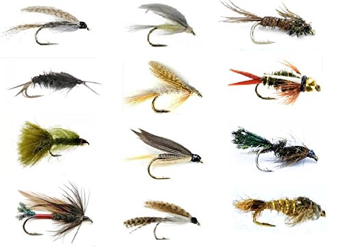 Feeder Creek Fly Fishing Lures Set - Wet and Dry Variety for Trout and Freshwater Fish - 12 Patterns - Nymph,Streamers, Helgramite, Wooly Bugger, Bead Head and More (12)