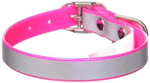 Dublin Dog 11-Inch to 14-Inch KOA Reflective Waterproof Dog Collar, Small, Pink