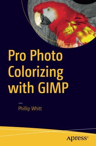 Pro Photo Colorizing with GIMP