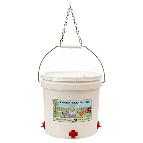 chicken coop water - 2