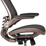 Flash Furniture Mid-Back Transparent Black Mesh