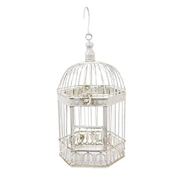 Amazon.com : Fun Express - DELUXE HOME DECORATION BIRD CAGE ...