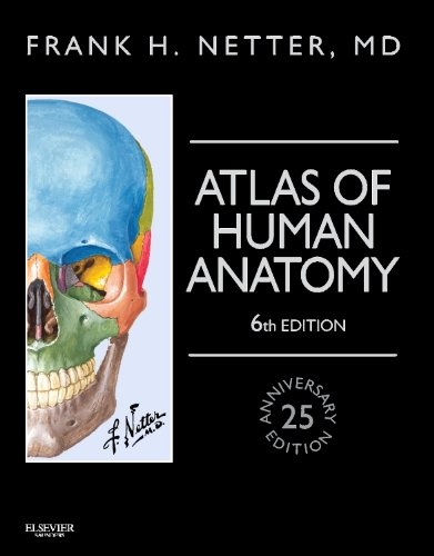 1455758884 - Atlas of Human Anatomy, Professional Edition: including NetterReference.com Access with Full Downloadable Image Bank, 6e (Netter Basic Science)
