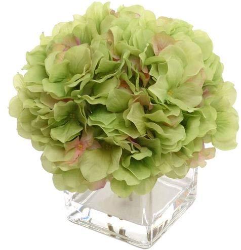 Larksilk Artificial Hydrangea Flower Arrangement Set in Vase | Gorgeous Green Silk French Mophead Hortensia Hydrangea Bush with Pink Highlights -