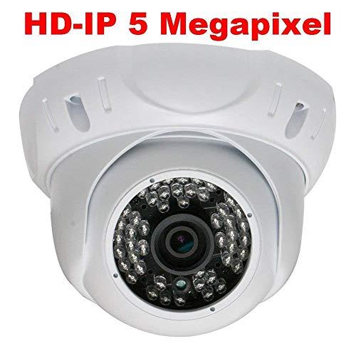 GW Security 5 Megapixel 2592 x 1920 Pixel Super HD 1920P High Definition Outdoor/Indoor PoE Weatherproof Security Dome IP Camera with Wide Angle Len (Renewed) ()