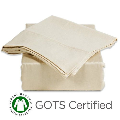 Gotcha Covered PURE Collection SPLIT CAL KING Size 100 Percent Organic Egyptian Cotton Sateen 300 Thread Count Bed Sheet Set - Low Profile 11 in. Natural