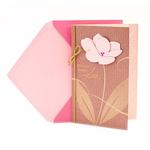 Hallmark Mother's Day Card from Son (Appreciation from a Grateful Son) -