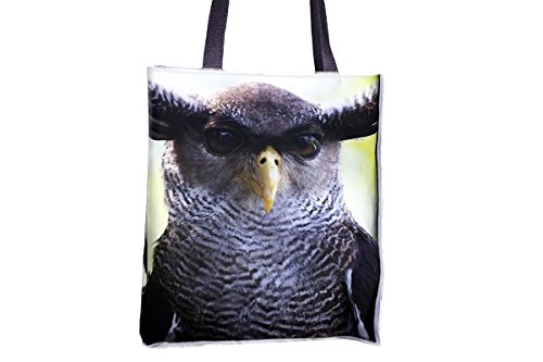 popular popular womens' bags best totes best Owl tote Head Close tote bags Nature tote bags allover large tote tote totes printed Bird bag Stare professional Up professional bags large PwA7qz