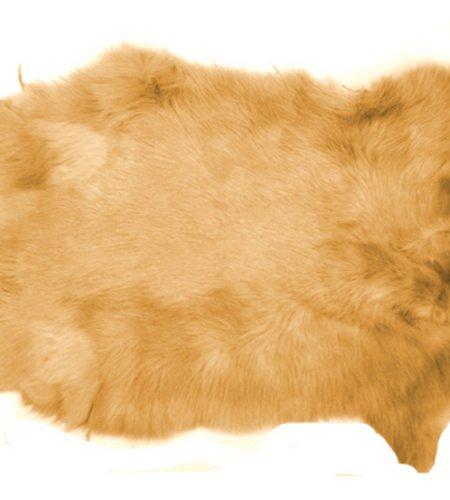 Fawn Ginger Brown Top Grade Real Rabbit Fur Pelt Skin Taxidermy