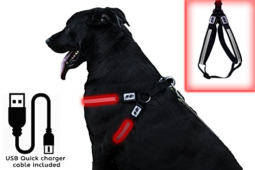 jab-doggie-goodies-safety-led-usb-rechargeable-adjustable-dog-harness-x-large-red
