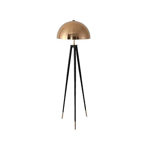 DSADDSD * Lámpara de pie de Sala Lámparas de pie Diseñador Moderno ...