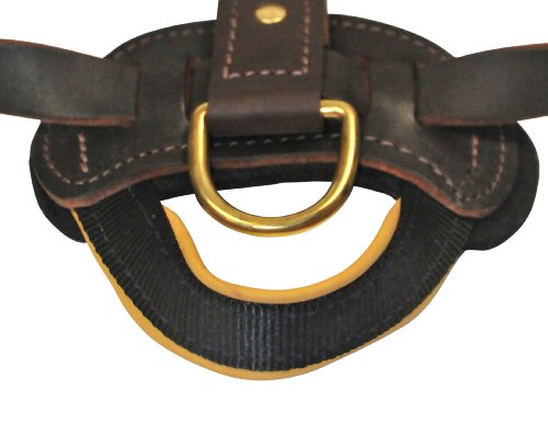 Dean and Tyler The Blade with Handle Solid Brass Hardware Leather Dog Harness, Brown, Medium - Fits Girth Size: 20-Inch to 32-Inch by Dean & Tyler (Image #4)