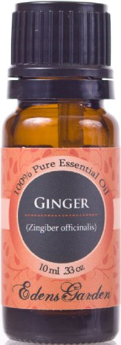 Ginger 100% Pure Huile