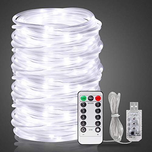 Onforu 66ft 200 LED Rope Lights, 8 Modes Dimmable String Lights, USB 5V Waterproof Fairy Lights, for Outdoor Garden Christmas Tree Wedding Decor, 6000K Daylight White (White Rope Lights)