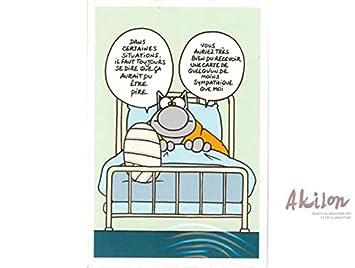 Anniversaire Le Chat Philippe Geluck Bonne Nouvelle Amazonfr