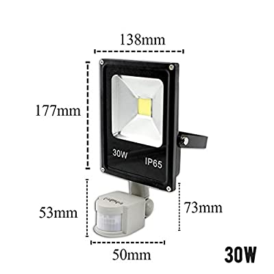 30W Motion Sensor, Warm White : Motion Sensor LED Flood Light 220V 10W 30W 50W Waterproof Floodlight Spotlight Outdoor Lighting Street LED Lamp Reflector IP65
