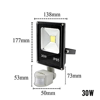 30W Motion Sensor, Warm White : Motion Sensor LED Flood Light 220V 10W 30W 50W Waterproof Floodlight Spotlight Outdoor Lighting Street LED Lamp Reflector IP65