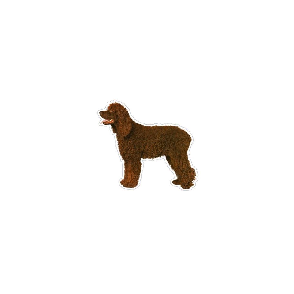 IRISH WOLFHOUND   Dog Decal   sticker car got window