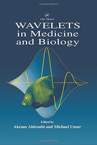Wavelets in Medicine and Biology