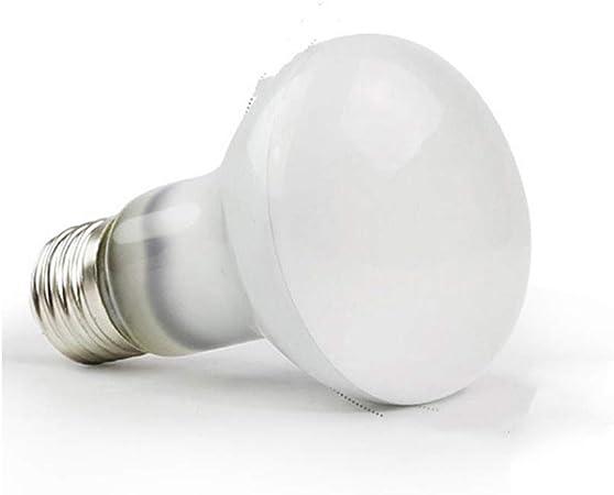 Lumiere Du Jour Uva Uva Lampe Chauffante Pour Appareil De